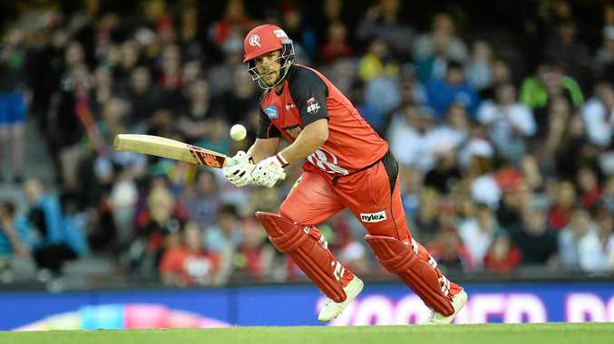 Aaron Finch plays a shot for the Melbourne Renegades.