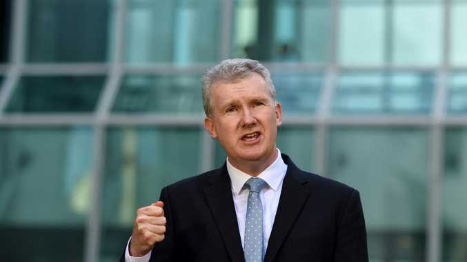 Tony Burke has quietly gone back to claiming flights for his family on the taxpayer purse.