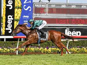 Strong Magic Millions start for Southern Downs