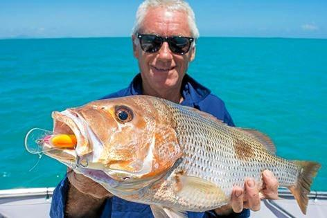 Paul landed this nice fingermark while on charter with Reel Addiction Sportfishing Whitsunday.