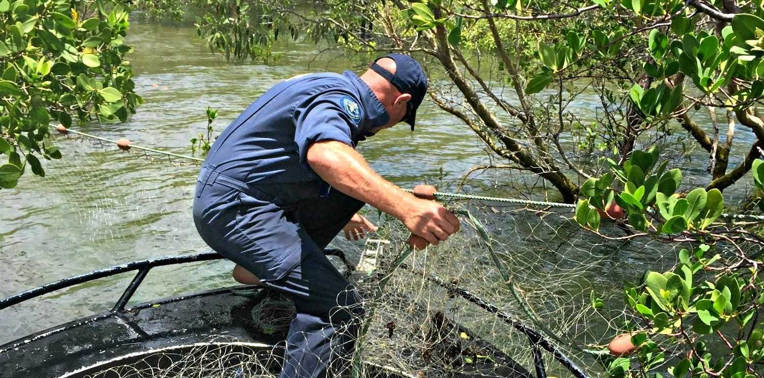 Waterways south of Bowen have been a hot spot for illegal fishing nets, Fisheries Queensland said.