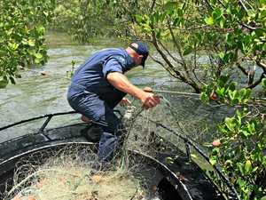 'Unlawful' fishing nets seized by officers