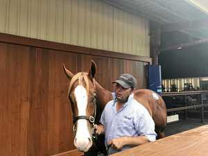 Rosari bred horse a starter in Magic Millions on Saturday