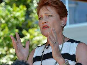 Pauline Hanson: Time to punish politicians who rort the claims