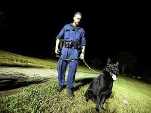 Dog sniffs out drug offender at shopping centre
