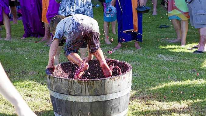 The Flame Hill Grape Stomp is fun for all ages.