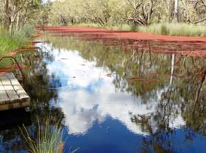 Waterholes: Fraser Coast hidden gems to cool off at