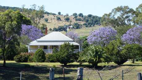 Guests are accommodated at one end of the house and have access to the front verandah which overlooks the valley where they can enjoy a full breakfast and afternoon tea.