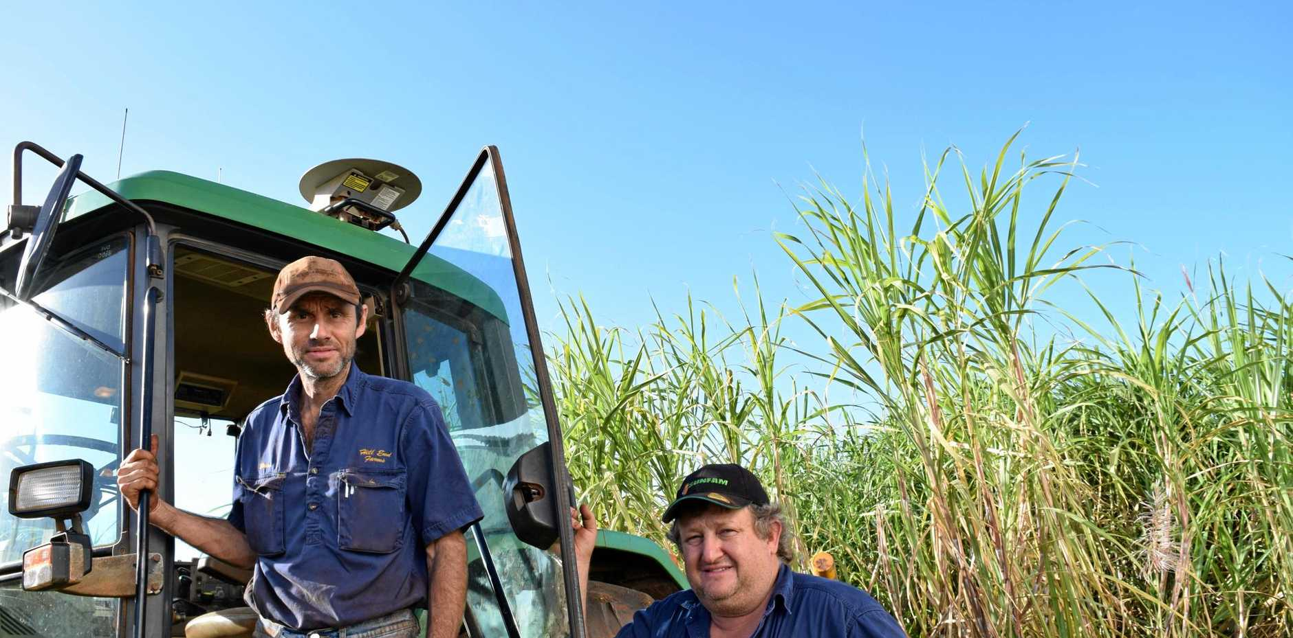 CRUSH: Fourth-generation cane farmers Brian and Mark Pressler. Photo: Eliza Goetze / Rural Weekly
