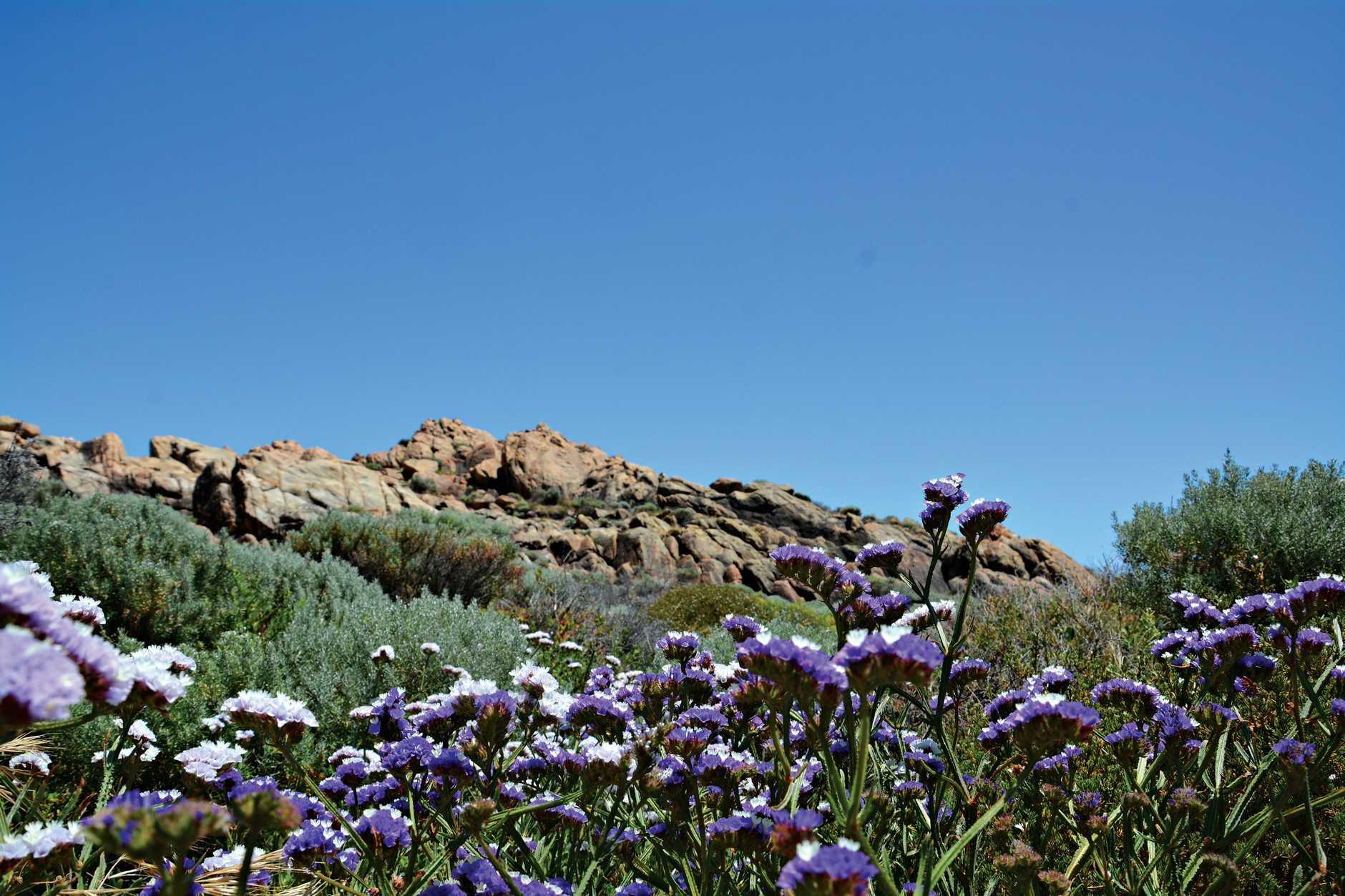 Canal Rocks on the Indian Ocean, in the Margaret River region in Western Australia.