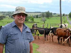 Milk price slash has farmers concerned