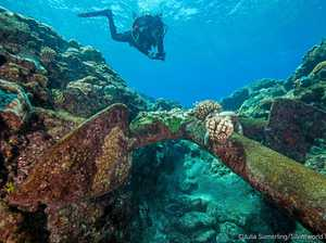 Cannons among four 19th century wrecks found off CQ coast