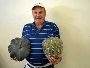 Ken's great pumpkin mystery