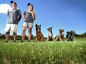 Dog academy 'something area has needed for a long time'