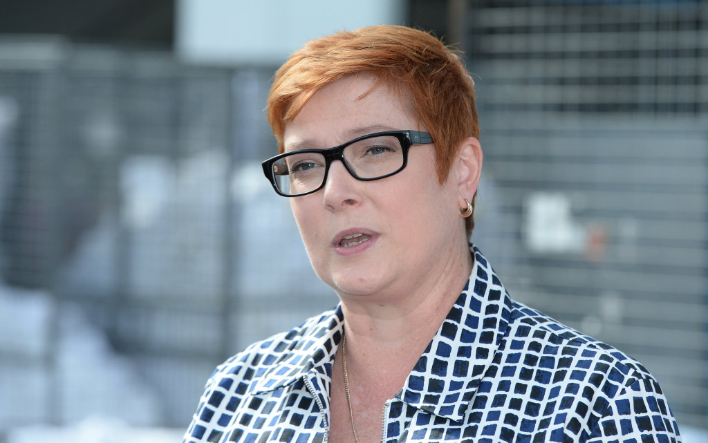 Defence Minister Marise Payne says Australia would contemplate entering Syrian conflict zone