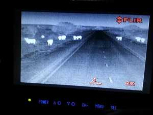 Animals spotted by the thermal camera attached to a truck during a trial in WA.