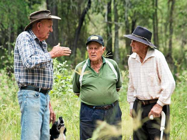 MEMORIES: Grantham Scrub farmers Fred Scott, John Sticklen and Alf Mischke stand in an overgrown government dam which has dried up for the first time since the 1920s.