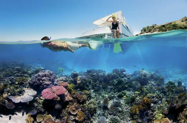 'Too Big To Fail': Great Barrier Reef Worth $42 Billion, Economists Say