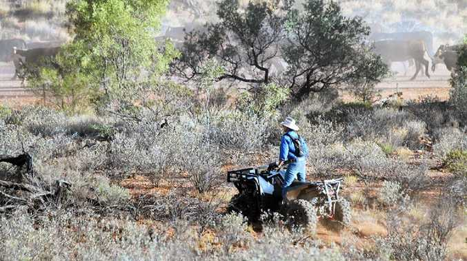 Quad bikes are an invaluable tool during mustering season at Henbury Station.Photo Contributed