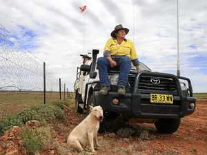 Guardian of world's longest pest exclusion fence