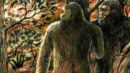 A woman says she spotted a yowie near Uki earlier this year.