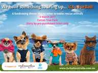 FurBall on the Beach is a waterside fundraising dinner under giant tepees with all proceeds helping Sunshine Coast rescue animals.