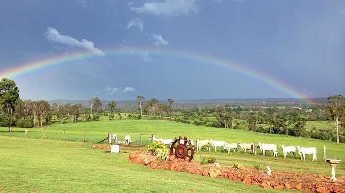 LOCK, STOCK AND BARREL: The 222ha property comes with a four-bedroom home, 30 head of cattle and all the equipment you need to farm the land.
