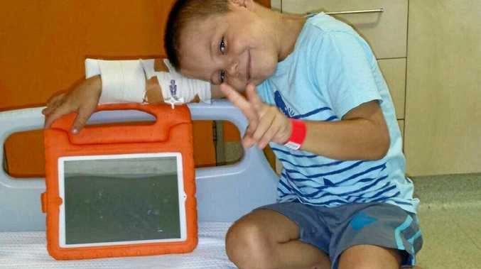 Brave little Cyrus at a hospital in Brisbane awaiting results on the tumours found on his head and leg.
