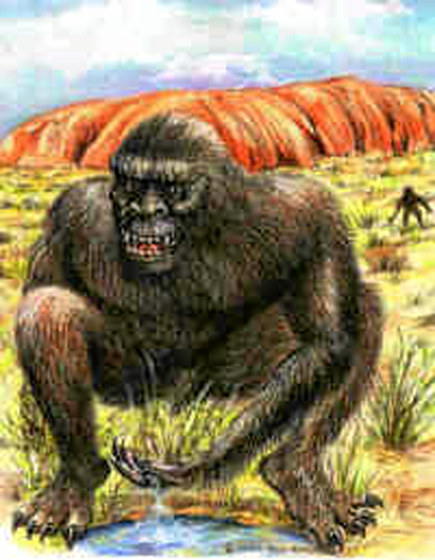 ELUSIVE: The yowie is a mysterious creature that is often seen in the Ipswich region.