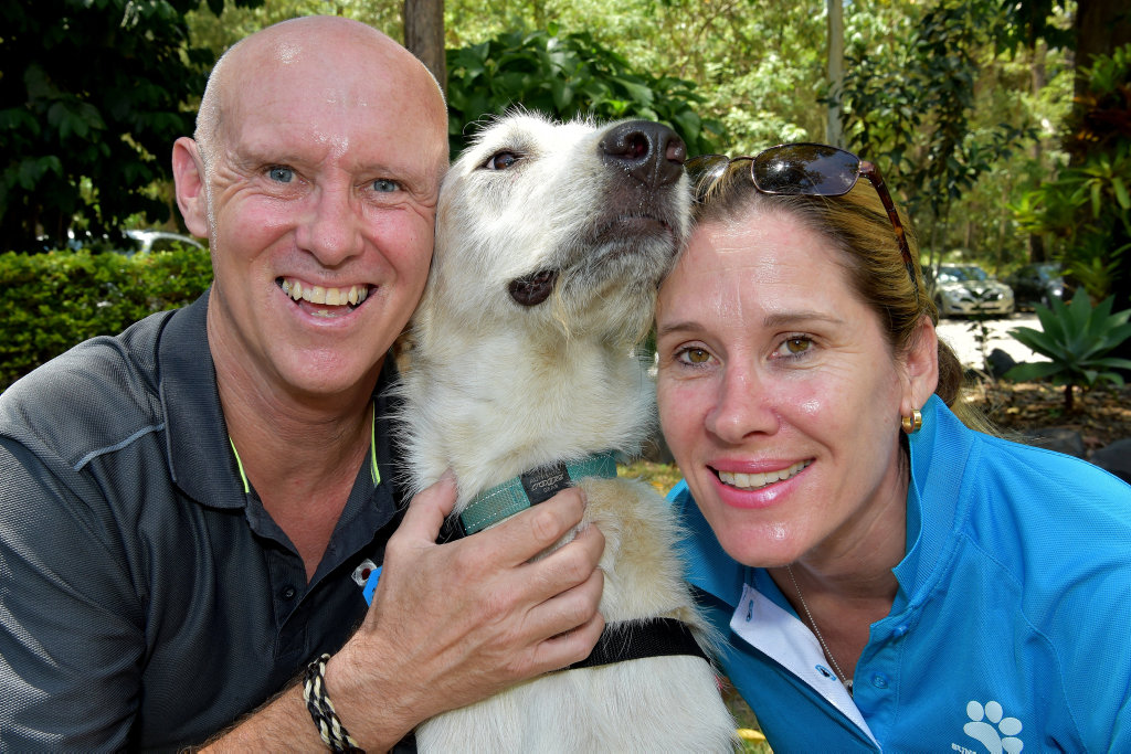 Oliver is a 18 month old wolfhound cross adopted from the Sippy Creek Animal Refuge by the Compass Assistance Dog program.Phil Brocklehurst from Compass Assistance Dog program and Penny Brischke from the Sippy Creek Anmla Refuge pictured with Oliver.