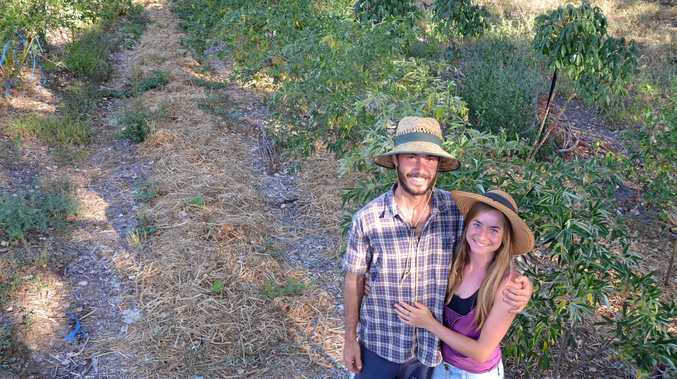 PERMACULTURE: Isaac Smith and partner Maigen Scarlet have worked hard on the garden.