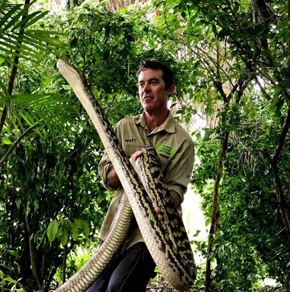 Matt Hagan Holding a very large, 5.2m Scrub Python. Photo: Facebook