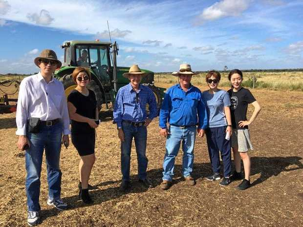 AGRIBUSINESS: Company representatives from Our Home and Rockhampton Regional Council Economic Development team members visit a feedlot.