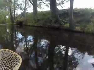 Bass stuck in snag underwater view