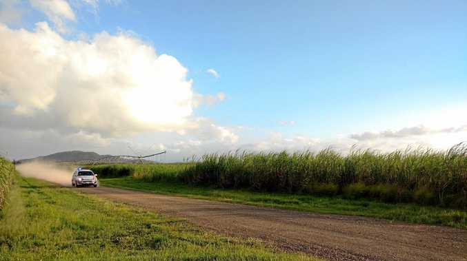 Police search for two men in cane fields at Marian.