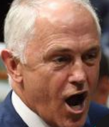Turnbull finally got angry, labels Shorten a 'parasite'
