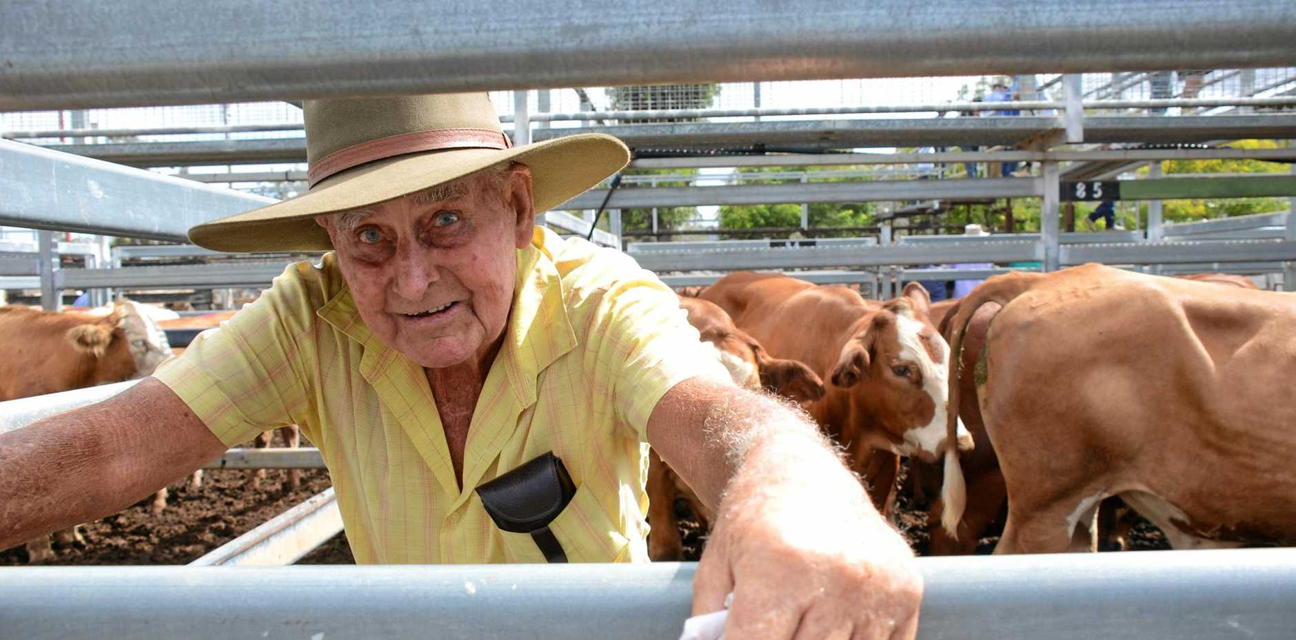 BIG BUCKS: Stan Gscheidle has been farming for over 60 years and got he's best price on record at the Murgon Cattle Sale on Tuesday.