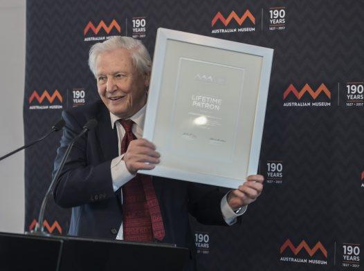 Sir David Attenborough receiving his Lifetime Patron award at the Australian Museum. Credit James Morgan, Australian Museum.