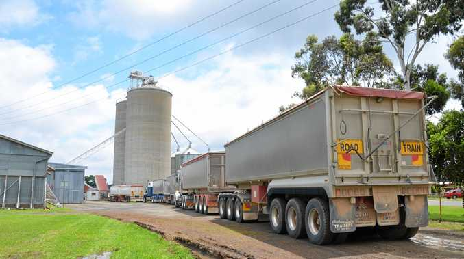 The line of trucks trying to reach the offload site at the Allora GrainX branch. Photo Ben Wilmott / Warwick Daily News