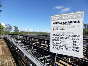Upgrade to saleyards moving closer to start date
