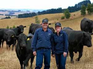 South Gippsland cattle operation planned with a stein