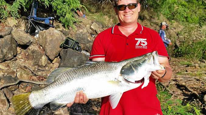 BIG SUCCESS: 960mm barra caught by Brendan Dodd in the Fitzroy River last week that was tagged and released in April 2013.