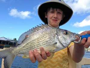 Top 4 places to find fish and how to catch them
