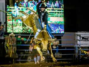 Massive Gympie Bull N Bronc setting records