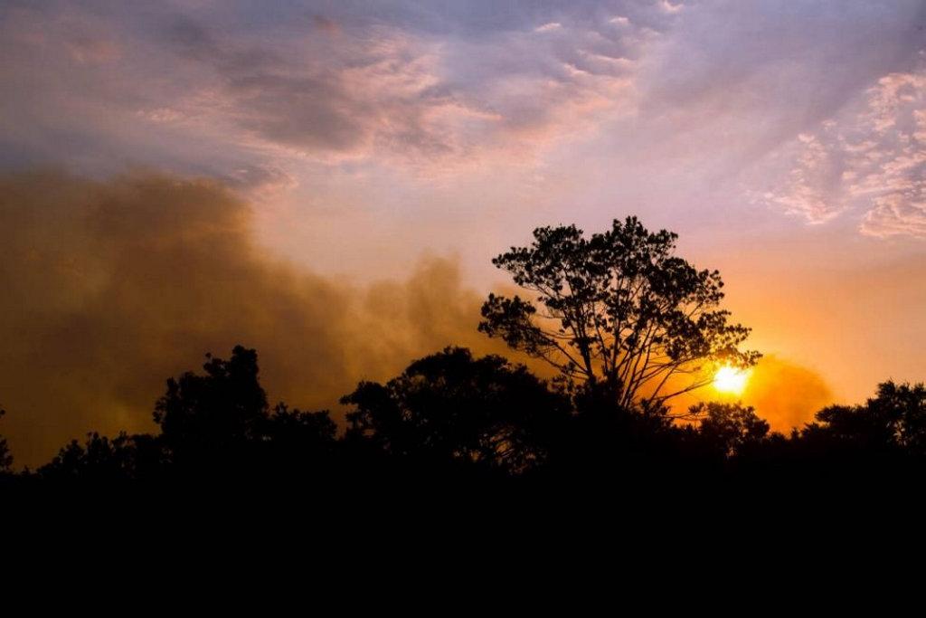 Mickey Williams took these photos of the bushfire near Lennox Head.