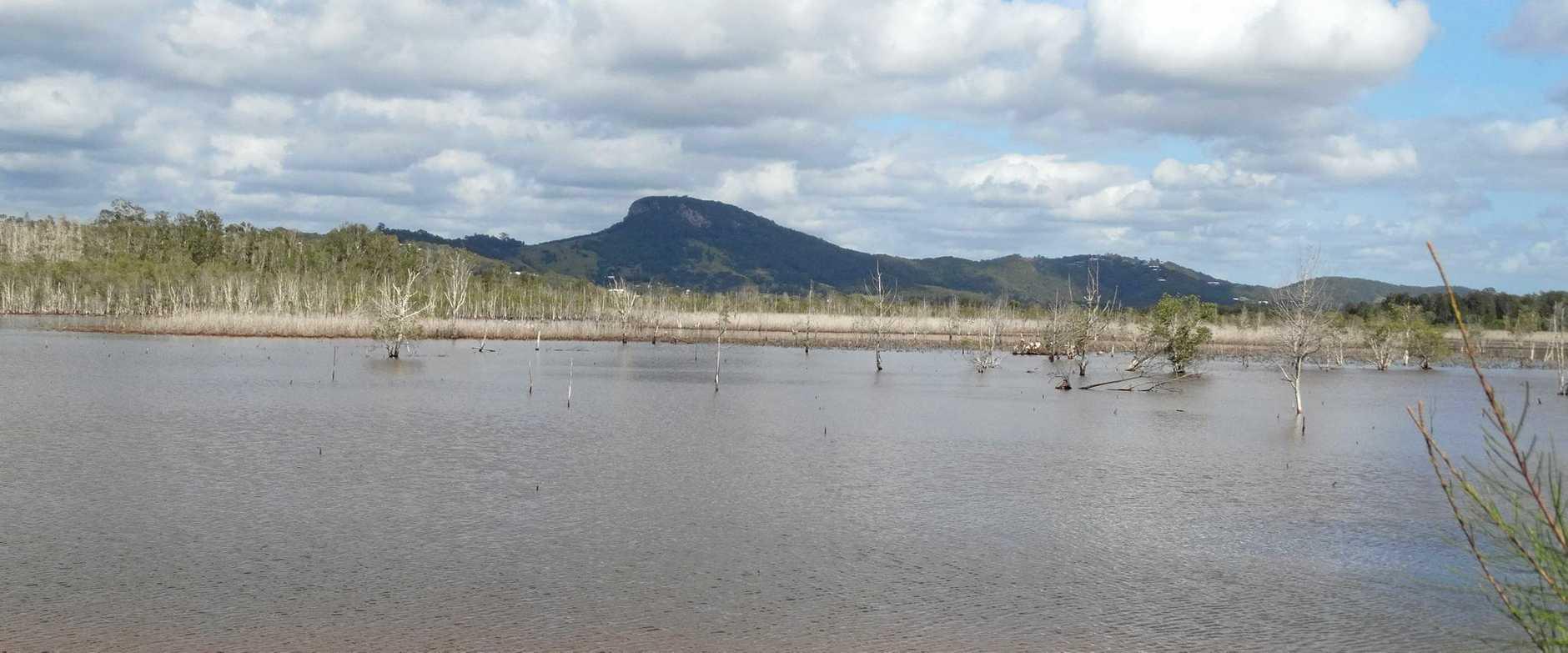 Yandina Creek Wetlands looking towards Mt Ninderry.