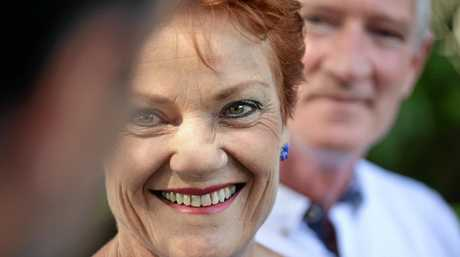 Pauline Hanson does not the support the government's