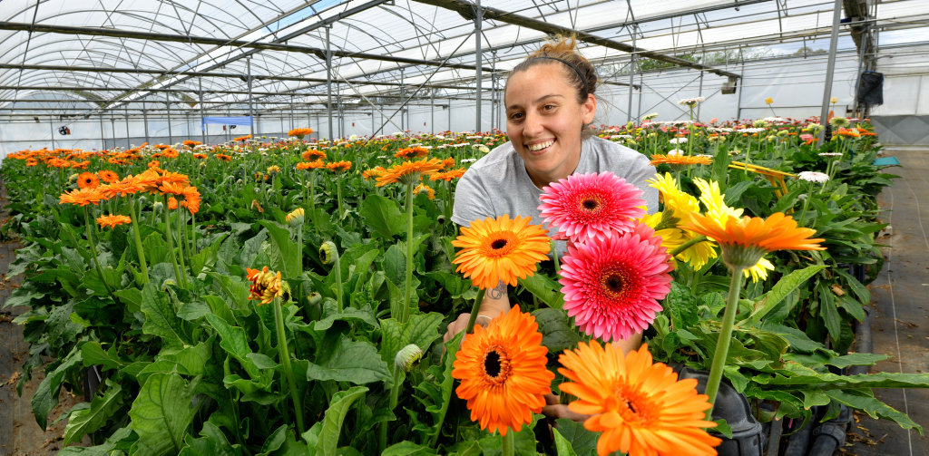 Currey Flowers sales manager Sonia Lee - Bitmead.