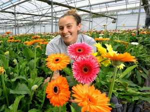 What Valentine's Day looks like on a flower farm