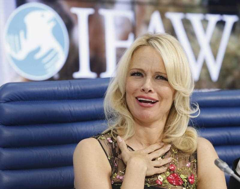 Has Pamela Anderson found love with exiled Wikileaks founder Julian Assange?